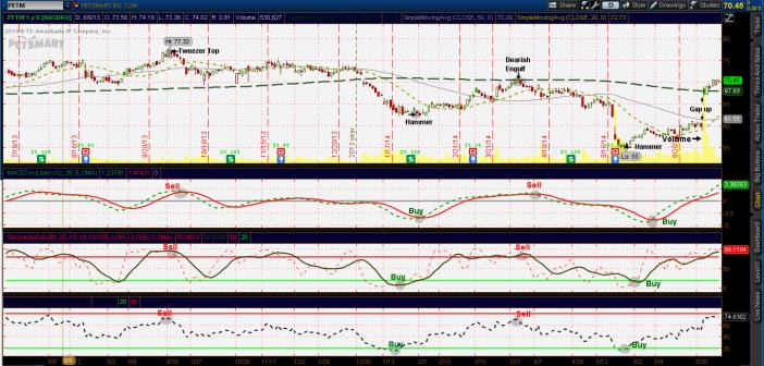 Chart reading PETM